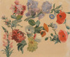 Art Prints of Studies of Summer Flowers by Jacques-Laurent Agasse