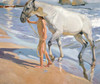 Art Prints of The Horse's Bath by Joaquin Sorolla y Bastida