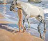 Art Prints of The Horse's Bath by Joaquin Sorolla y Bastida