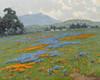 Art Prints of Mount Tamalpais near San Francisco by John Marshall Gamble