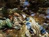 Art Prints of The Brook by John Singer Sargent