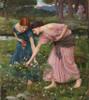 Art Prints of Gather ye Rosebuds by John William Waterhouse