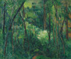 Art Prints of Interior of a Forest by Paul Cezanne