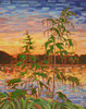 Art Prints of Sunset Lake by Tom Thomson