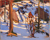 Art Prints of Sun in the Bush by Tom Thomson