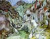 Art Prints of Le Peiroulets Ravine by Vincent Van Gogh