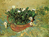 Art Prints of Pot with Flowering Plant by Vincent Van Gogh