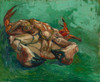 Art Prints of Crustacean or Crab Lying on His Back by Vincent Van Gogh