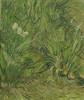 Art Prints of Garden with Butterflies by Vincent Van Gogh