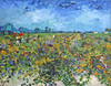 Art Prints of Green Vineyard by Vincent Van Gogh