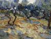 Art Prints of Olive Trees, 1889 by Vincent Van Gogh