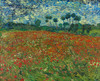 Art Prints of Poppy Field by Vincent Van Gogh
