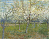 Art Prints of The Pink Orchard by Vincent Van Gogh