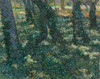 Art Prints of Undergrowth II by Vincent Van Gogh