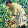 Art Prints of In the Garden by Walter Ufer