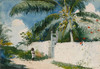 Art Prints of Garden in Nassau by Winslow Homer