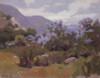 Art Prints of Lupines in the Mist by Elmer Wachtel