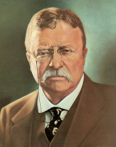 Art Prints of Theodore Roosevelt, Presidential Portraits