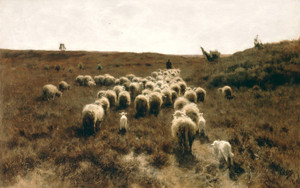 Art Prints of The Return of the Flock, Laren by Anton Mauve