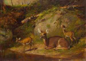 Art Prints of Doe and Two Fawns by Arthur Fitzwilliam Tait