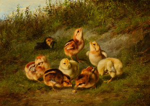 Art Prints of Little Pets by Arthur Fitzwilliam Tait