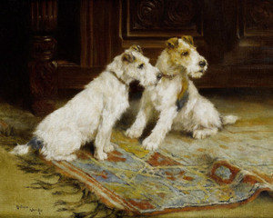 Art Prints of Anticipation by Arthur Wardle