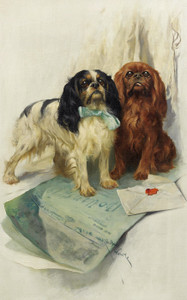 Art Prints of Pen Friends, King Charles Spaniels by Arthur Wardle