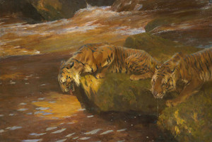 Art Prints of Two Tigers by a River by Arthur Wardle