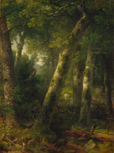 Art Prints of Forest in the Morning Light by Asher Brown Durand