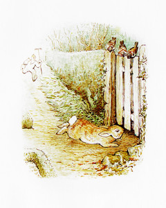 Art Prints of Mcgregor Chases Peter under the Fence by Beatrix Potter