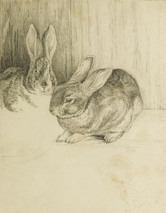 Art Prints of Two Bunnies by Beatrix Potter