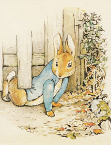 Art Prints of Peter Slips Under the Fence by Beatrix Potter