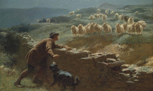 Art Prints of The Sheepstealer by Briton Riviere