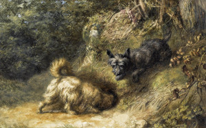 Art Prints of Terriers at Work by Briton Riviere