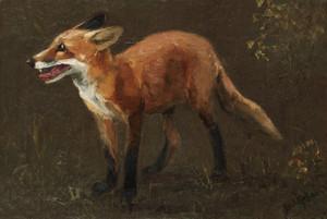 Art Prints of Fox Cub by Bruno Liljefors