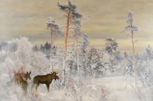 Art Prints of Moose by Bruno Liljefors