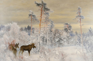 Art Prints of Moose by Bruno Liljefors