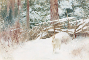 Art Prints of Winter Hare at the Fence by Bruno Liljefors