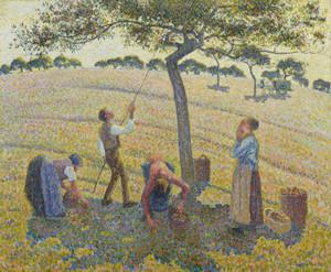 Art Prints of Apple Harvest by Camille Pissarro