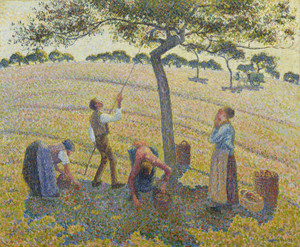 Art Prints of Apple Harvest by Camille Pissarro