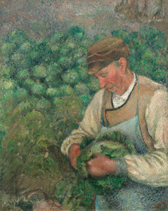 Art Prints of The Garden, Old Peasant with Cabbage by Camille Pissarro