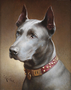 Art Prints of A Blue Great Dane by Carl Reichert