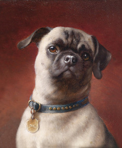 Art Prints of Mops by Carl Reichert