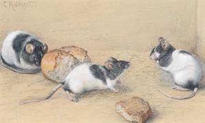 Art Prints of Mice by Carl Reichert