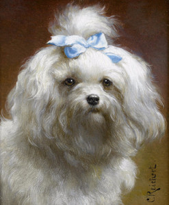 Art Prints of The Blue Bow by Carl Reichert