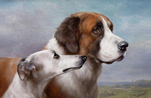 Art Prints of St. Bernard and Greyhound by Carl Reichert