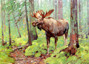 Art Prints of Moose in the Woods by Carl Rungius