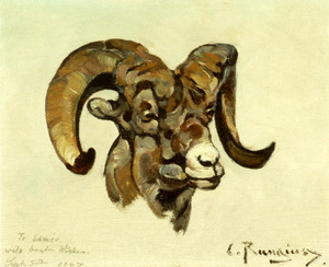 Art Prints of Ram Head by Carl Rungius