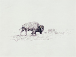 Art Prints of Lords of Yellowstone by Charles Marion Russell