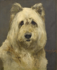 Art Prints of Portrait of a Dog by Charles Van den Eycken